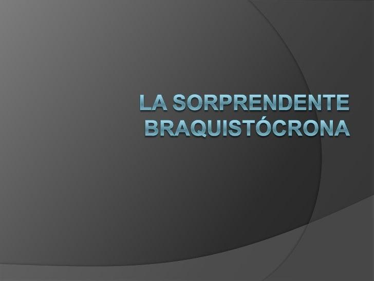 La Sorprendente Braquistócrona<br />