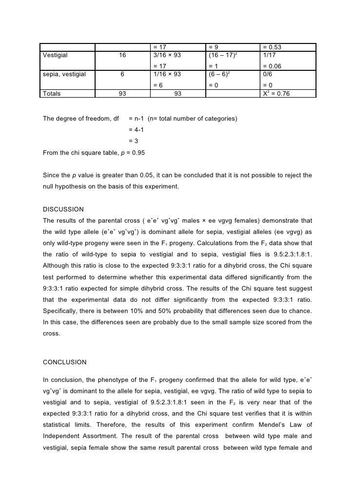 Drosophila melanogaster lab report hypothesis