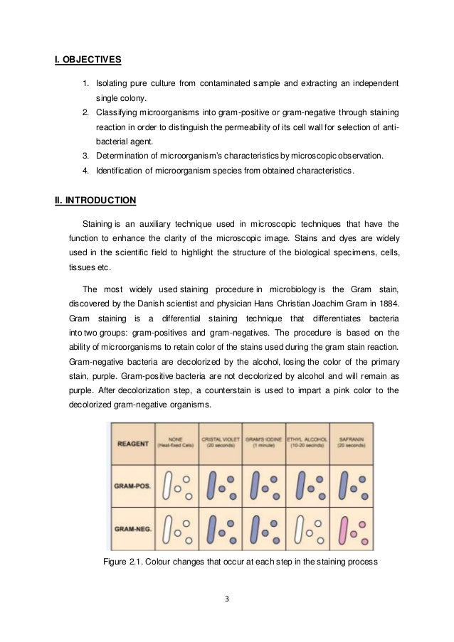 scientific lab report abstract example