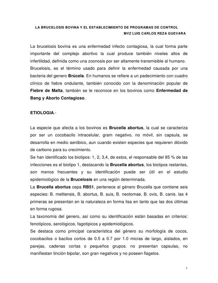 LA BRUCELOSIS BOVINA Y EL ESTABLECIMIENTO DE PROGRAMAS DE CONTROL                                                   MVZ LU...