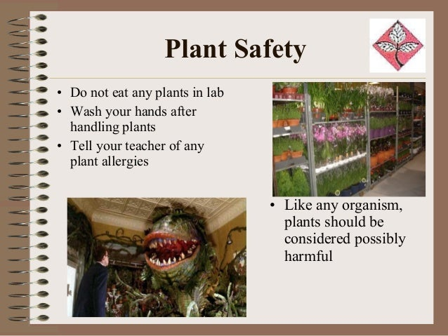 Plant Safety and Security