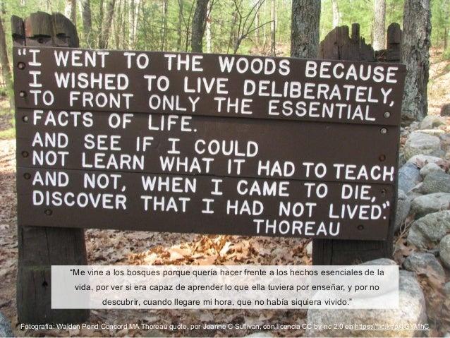 Fotografía: Walden Pond Concord MA Thoreau quote, por Joanne C Sullivan, con licencia CC by-nc 2.0 en https://flic.kr/p/4G...