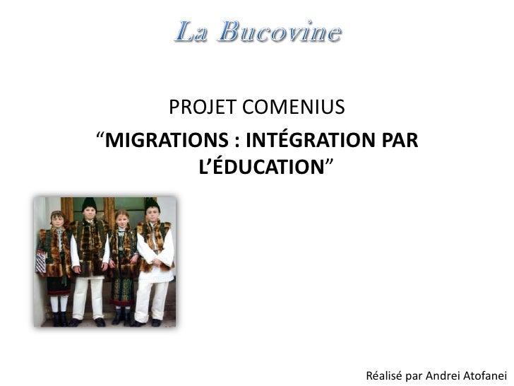 """PROJET COMENIUS""""MIGRATIONS : INTÉGRATION PAR         L'ÉDUCATION""""                        Réalisé par Andrei Atofanei"""