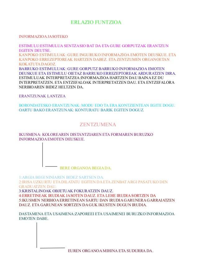 ERLAZIO FUNTZIOA INFORMAZIOA JASOTEKO ESTIMULU:ESTIMULUA SENTZASIO BAT DA ETA GURE GORPUTZAK ERANTZUN EGITEN DEUTSE. KANPO...