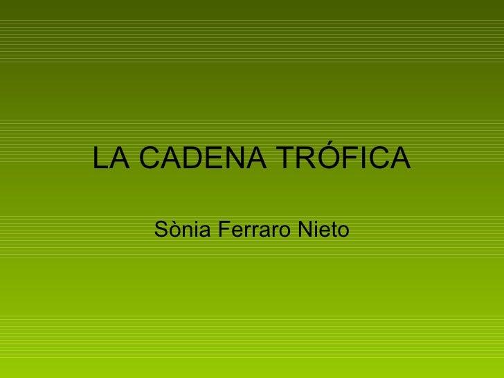 LA CADENA TRÓFICA Sònia Ferraro Nieto