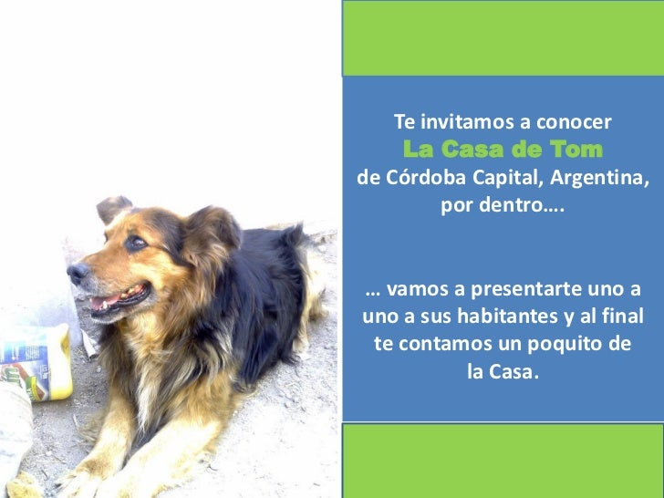 Te invitamos a conocer     La Casa de Tomde Córdoba Capital, Argentina,         por dentro….… vamos a presentarte uno auno...