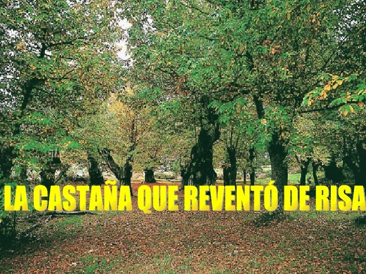 LA CASTAÑA QUE REVENTÓ DE RISA