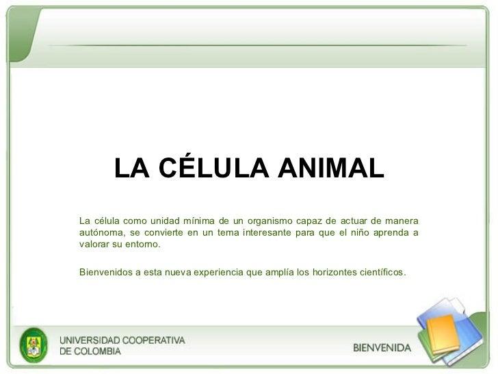 LA CÉLULA ANIMAL La célula como unidad mínima de un organismo capaz de actuar de manera autónoma, se convierte en un tema ...