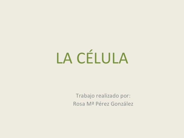 LA CÉLULA Trabajo realizado por: Rosa Mª Pérez González