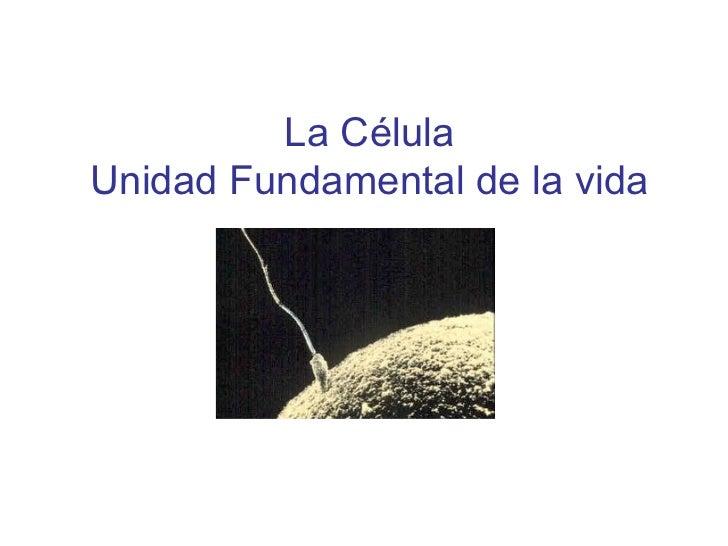 La CélulaUnidad Fundamental de la vida