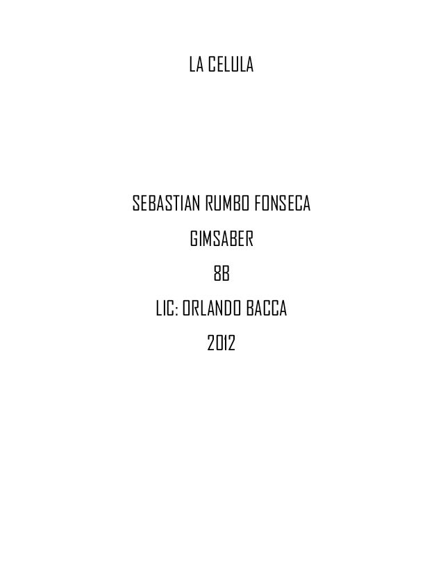 LA CELULASEBASTIAN RUMBO FONSECA       GIMSABER          8B   LIC: ORLANDO BACCA          2012
