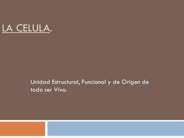 LA CELULA.  Unidad Estructural, Funcional y de Origen de todo ser Vivo.