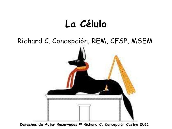 La CélulaRichard C. Concepción, REM, CFSP, MSEMDerechos de Autor Reservados © Richard C. Concepción Castro 2011