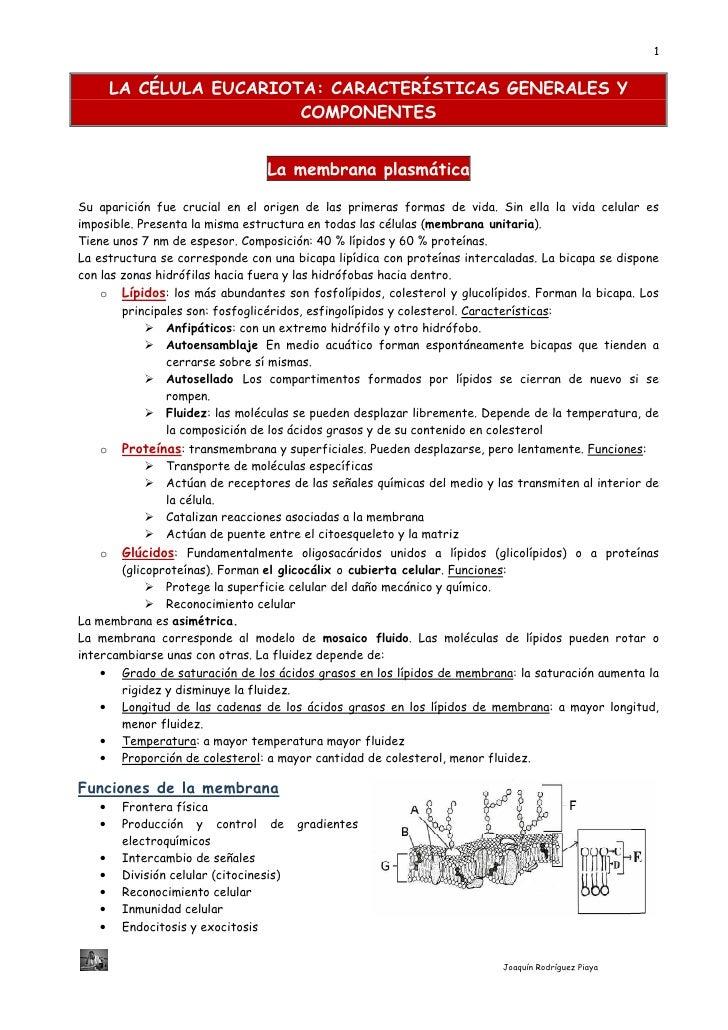 1       LA CÉLULA EUCARIOTA: CARACTERÍSTICAS GENERALES Y                         COMPONENTES                              ...