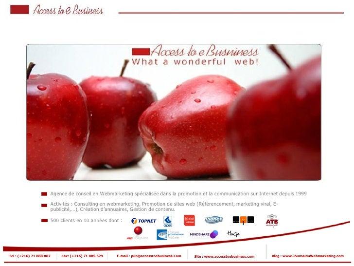 Agence de conseil en Webmarketing spécialisée dans la promotion et la communication sur Internet depuis 1999              ...