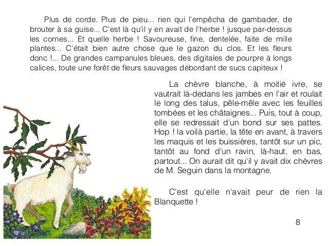 La chèvre blanche, à moitié ivre, se vautrait là-dedans les jambes en l'air et roulait le long des talus, pêle-mêle avec l...