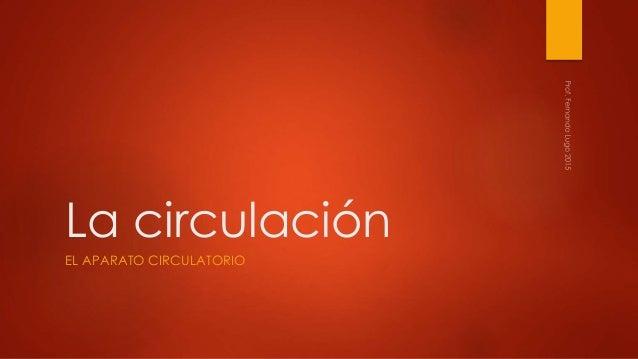 La circulación EL APARATO CIRCULATORIO
