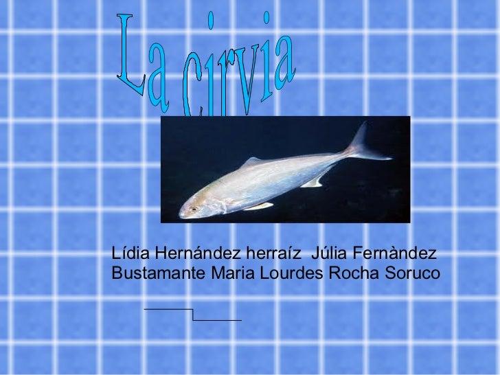 Lídia Hernández herraíz  Júlia Fernàndez Bustamante Maria Lourdes Rocha Soruco La cirvia