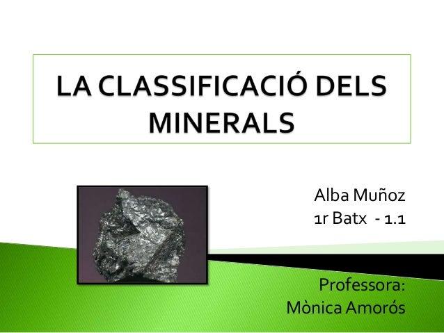 Alba Muñoz 1r Batx - 1.1  Professora: Mònica Amorós