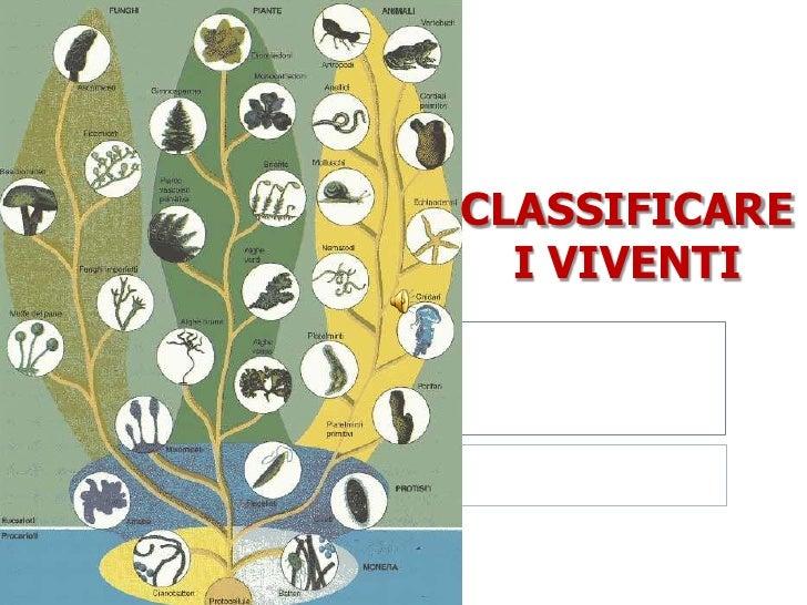CLASSIFICARE  I VIVENTI <br />