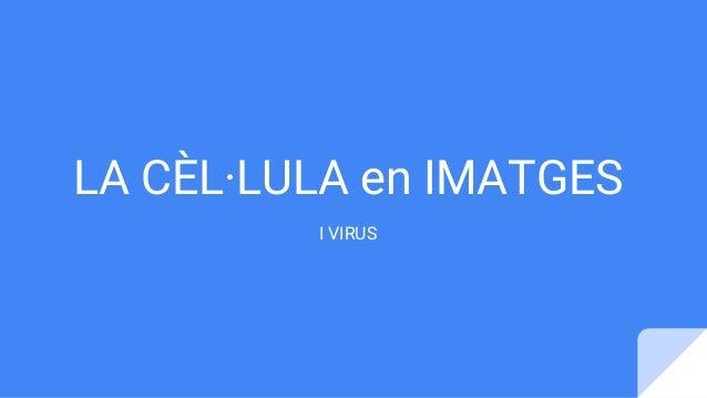 LA CÈL·LULA en IMATGES I VIRUS