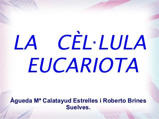 LA CÈL LULA· EUCARIOTA Àgueda Mª Calatayud Estrelles i Roberto Brines Suelves.