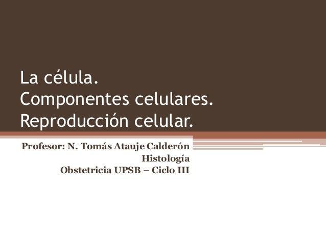 La célula. Componentes celulares. Reproducción celular. Profesor: N. Tomás Atauje Calderón Histología Obstetricia UPSB – C...