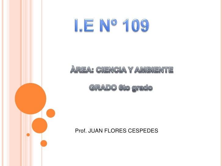 I.E Nº 109 <br />ÀREA: CIENCIA Y AMBIENTE<br />GRADO 6to grado <br />Prof. JUAN FLORES CESPEDES <br />