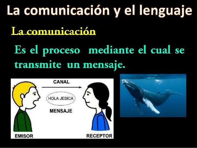 http://www.youtube.com/watch?v=W9VFsly_Wvkhttp://www.youtube.com/watch?v=raPRuHh1KW8Comunicación animal