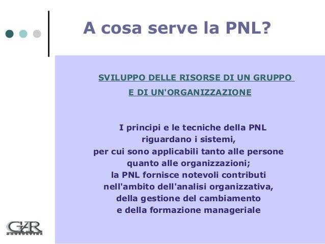 A cosa serve la PNL? SVILUPPO DELLE RISORSE DI UN GRUPPO E DI UN'ORGANIZZAZIONE  I principi e le tecniche della PNL riguar...