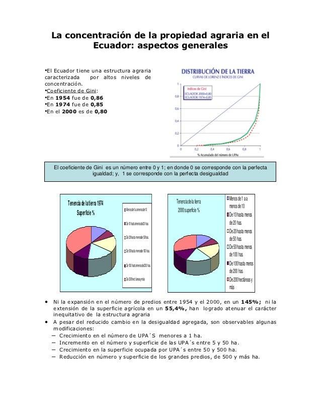 La concentración de la propiedad agraria en el            Ecuador: aspectos generales•El Ecuador tiene una estructura agra...