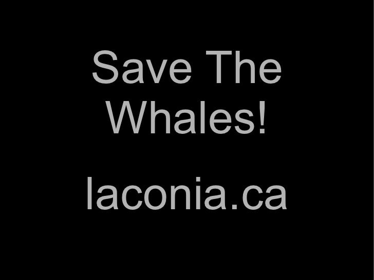 Save The Whales! laconia.ca
