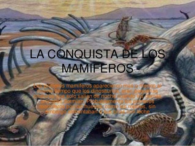 LA CONQUISTA DE LOS MAMIFEROS Los primeros mamíferos aparecieron mas o menos al mismo tiempo que los dinosaurios, eran peq...