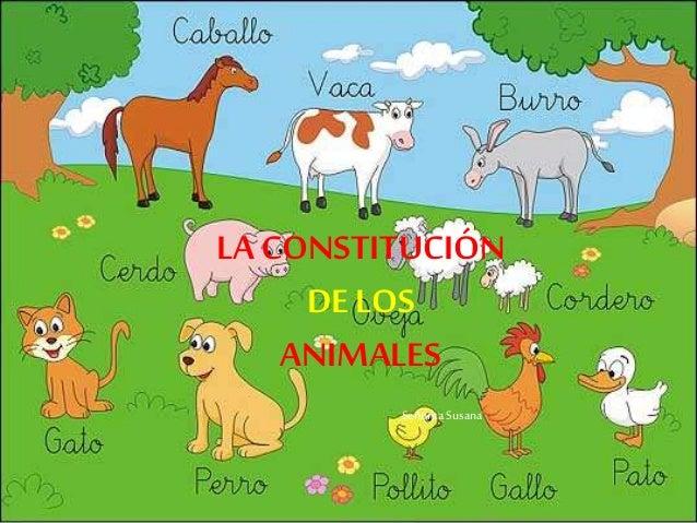 LA CONSTITUCIÓN DE LOS ANIMALES Señorita Susana