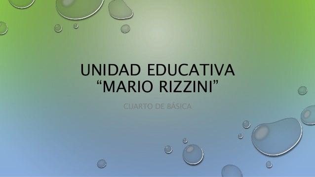 """UNIDAD EDUCATIVA """"MARIO RIZZINI"""" CUARTO DE BÁSICA"""