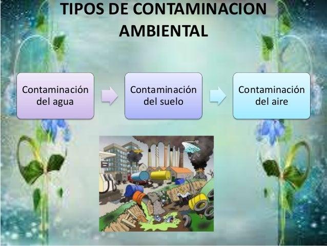 La contaminación ambiental Slide 3