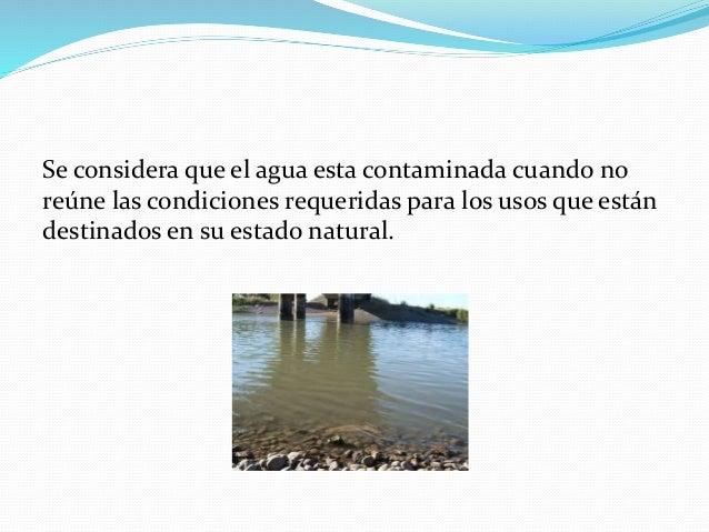 Se considera que el agua esta contaminada cuando no reúne las condiciones requeridas para los usos que están destinados en...