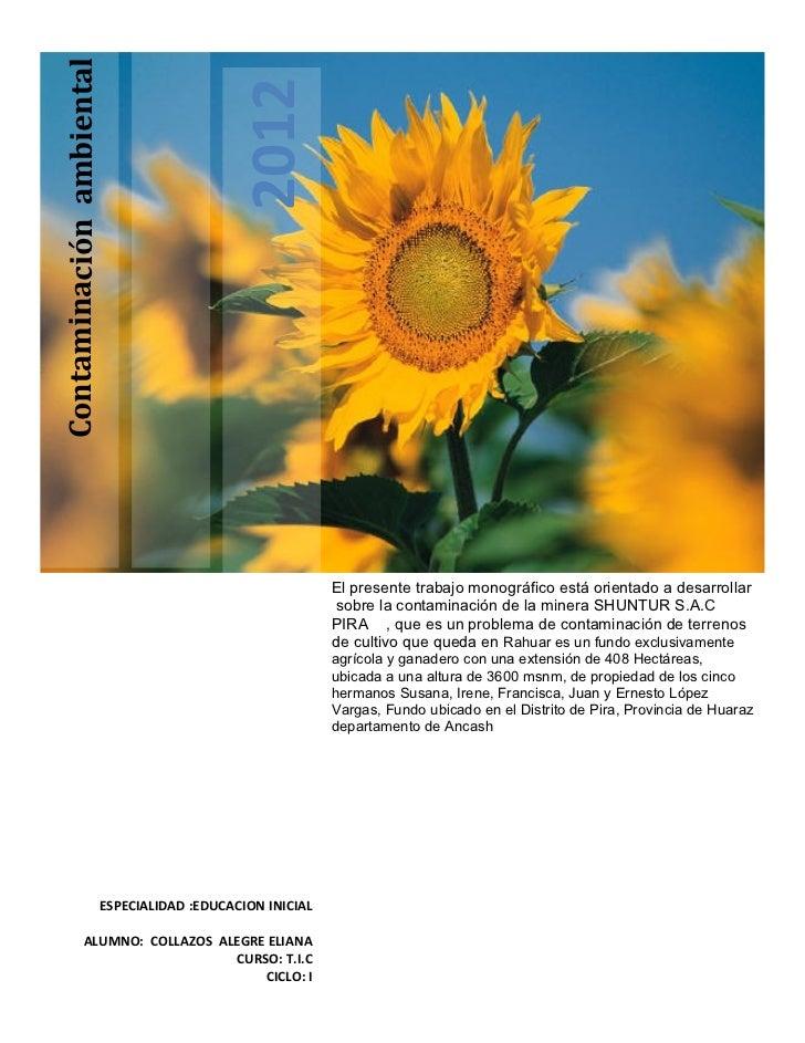 Contaminación ambiental                                             2012                                                  ...