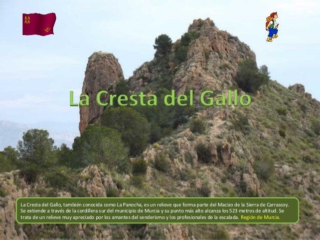 La Cresta del Gallo, también conocida como La Panocha, es un relieve que forma parte del Macizo de la Sierra de Carrascoy....