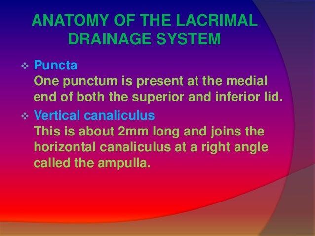 Lacrimal sac syringing Slide 3