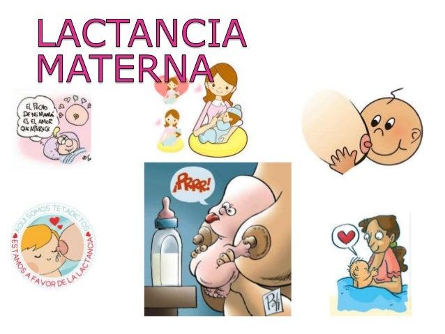 fisiologia y anatomia de la Lactancia materna