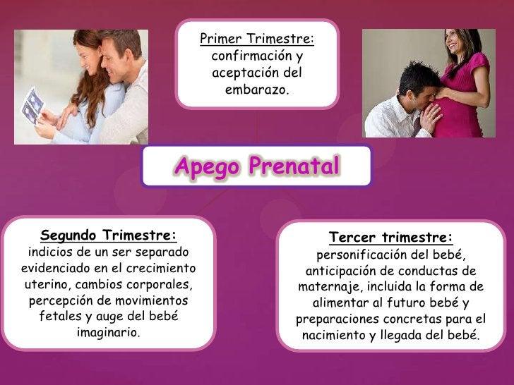 0 - 3 meses el bebé expresa                         su competencia relacional                                orientando la...