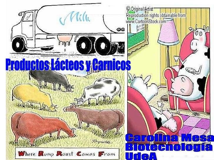 Carolina Mesa  Biotecnología  UdeA Productos Lácteos y Carnicos