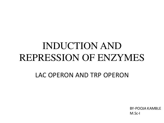 INDUCTION AND REPRESSION OF ENZYMES LAC OPERON AND TRP OPERON  BY-POOJA KAMBLE M.Sc-I