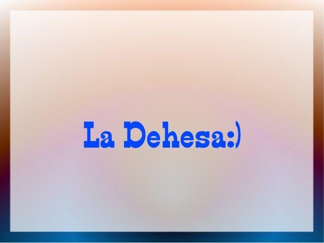 La Dehesa:)