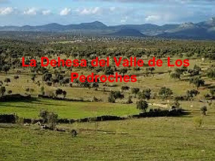 La Dehesa del Valle de Los Pedroches