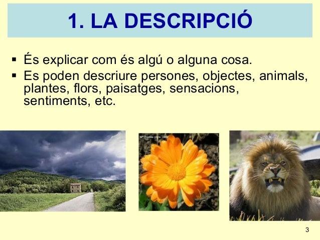 La descripció1 powerpoint Slide 3
