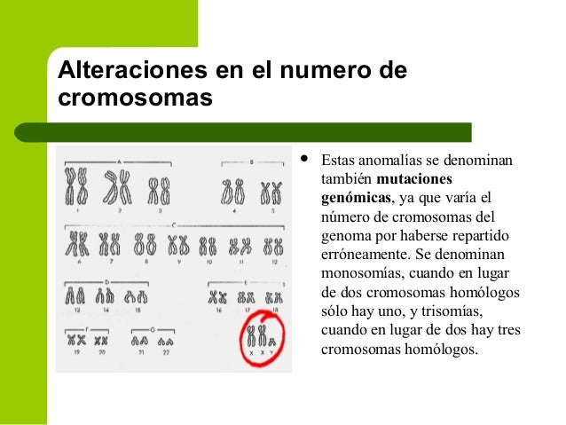 mexicano numeros de chicas sexo