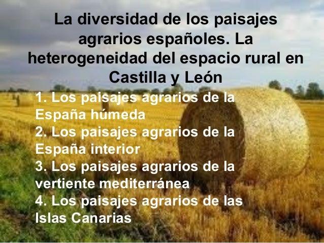 La diversidad de los paisajesagrarios españoles. Laheterogeneidad del espacio rural enCastilla y León1. Los paisajes agrar...