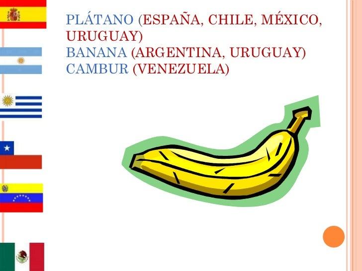 PLÁTANO  ( ESPAÑA, CHILE, MÉXICO, URUGUAY) BANANA  (ARGENTINA, URUGUAY) CAMBUR   (VENEZUELA)